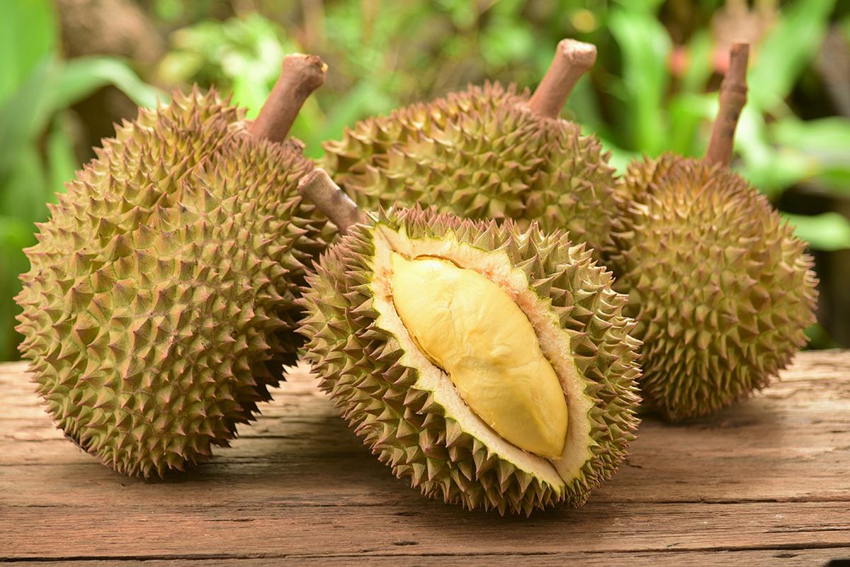 Smrdí ako hnilé mäso, no aj tak patrí medzi obľúbené pochúťky. Durian je ovocie ako žiadne iné