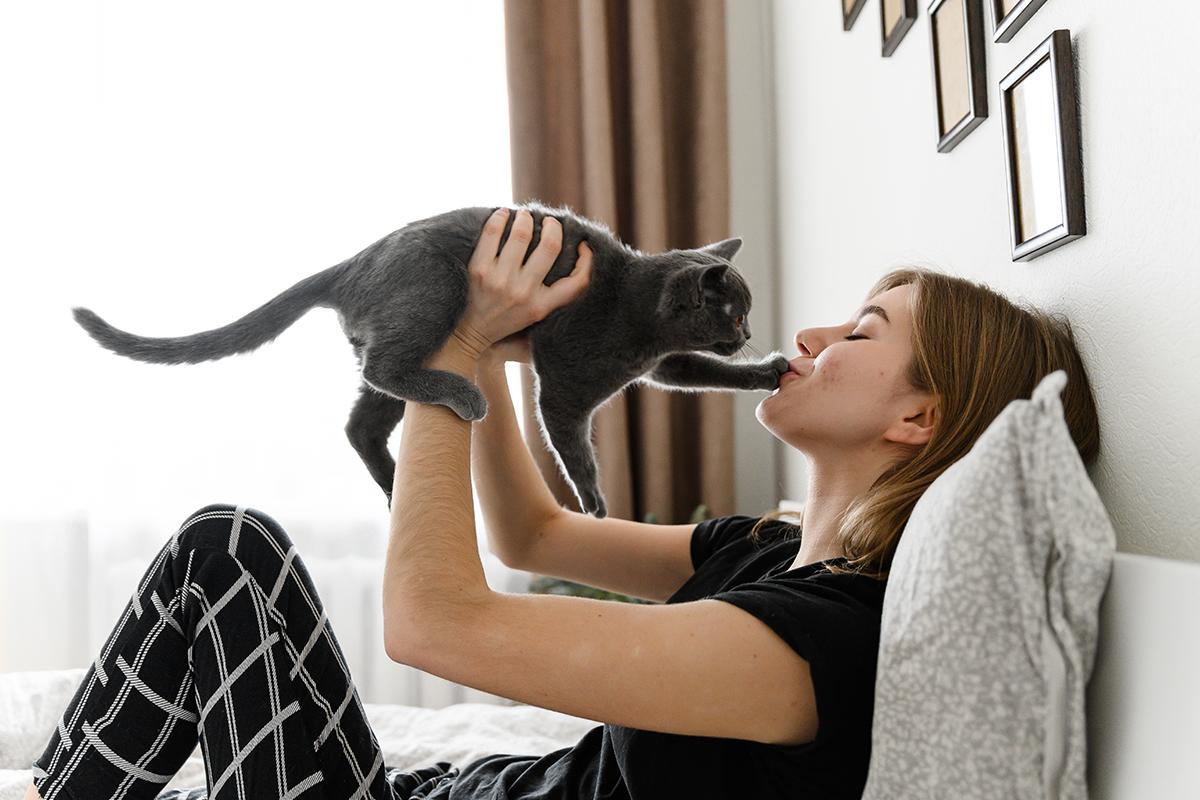 Máš doma nejaké zvieratko? Podľa prieskumu má doma mačku 20 percent Slovákov